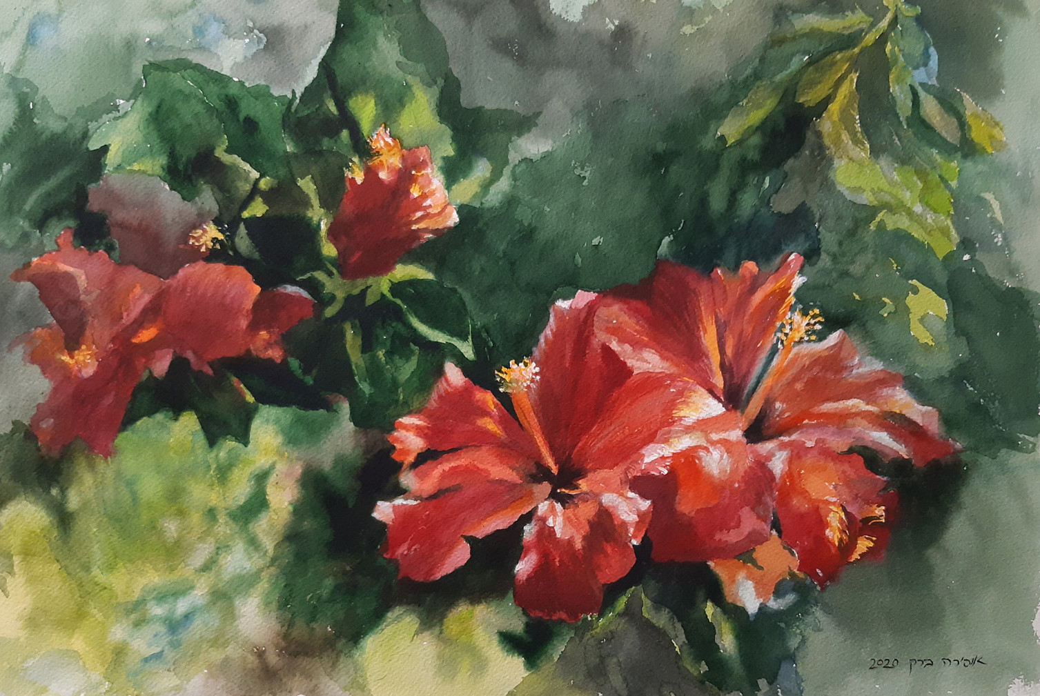 Red hibiscus-Watercolor-56X36cm-2020