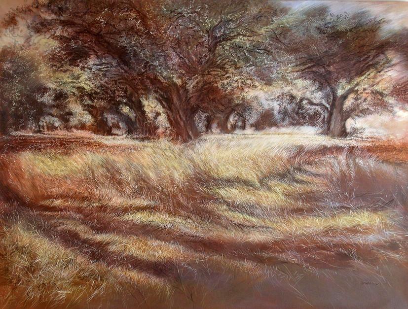 Olive groves-Acrylic-120X90cm-2003