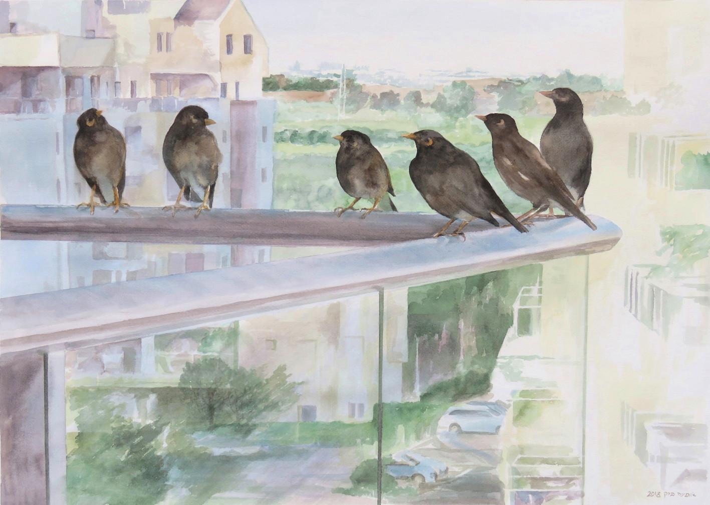 Urbanbirds-Watercolor-70X50cm-2018