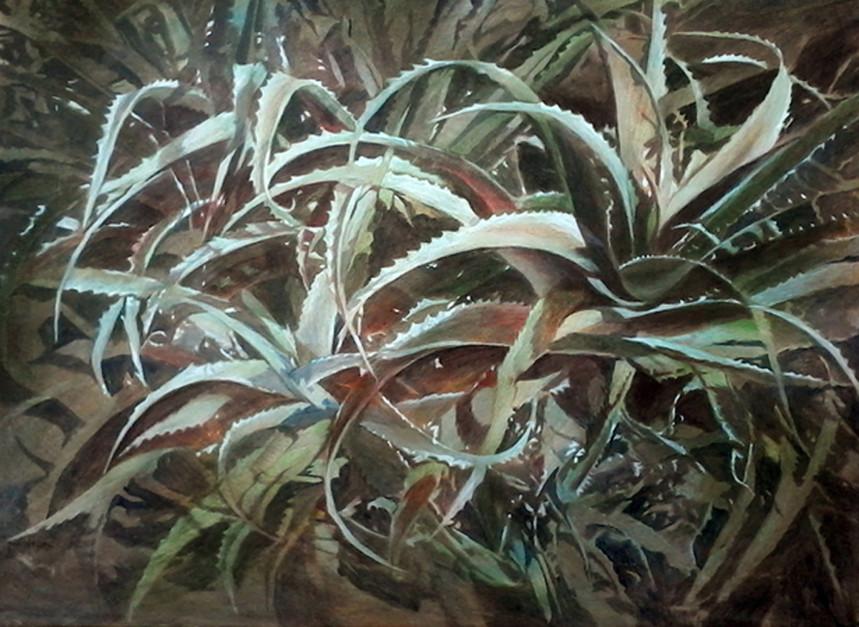 Aloevera-Acrylic-80X60-2014