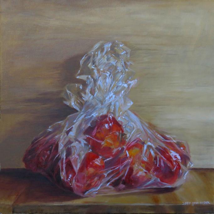 Pomegranate in a bag-Oil-40X40-2017