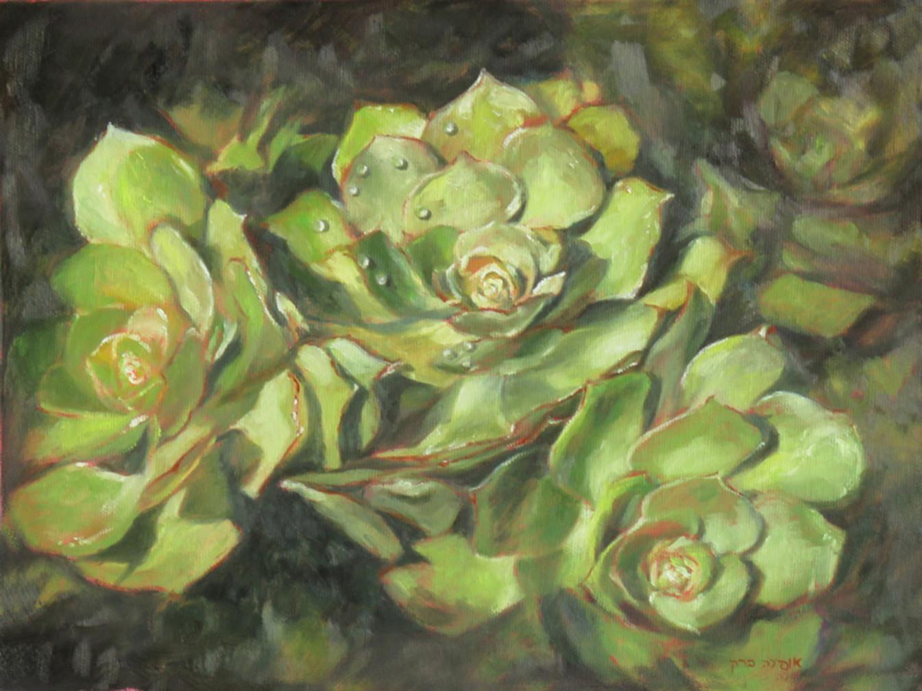 Succulent-Oil-40X30cm-2016