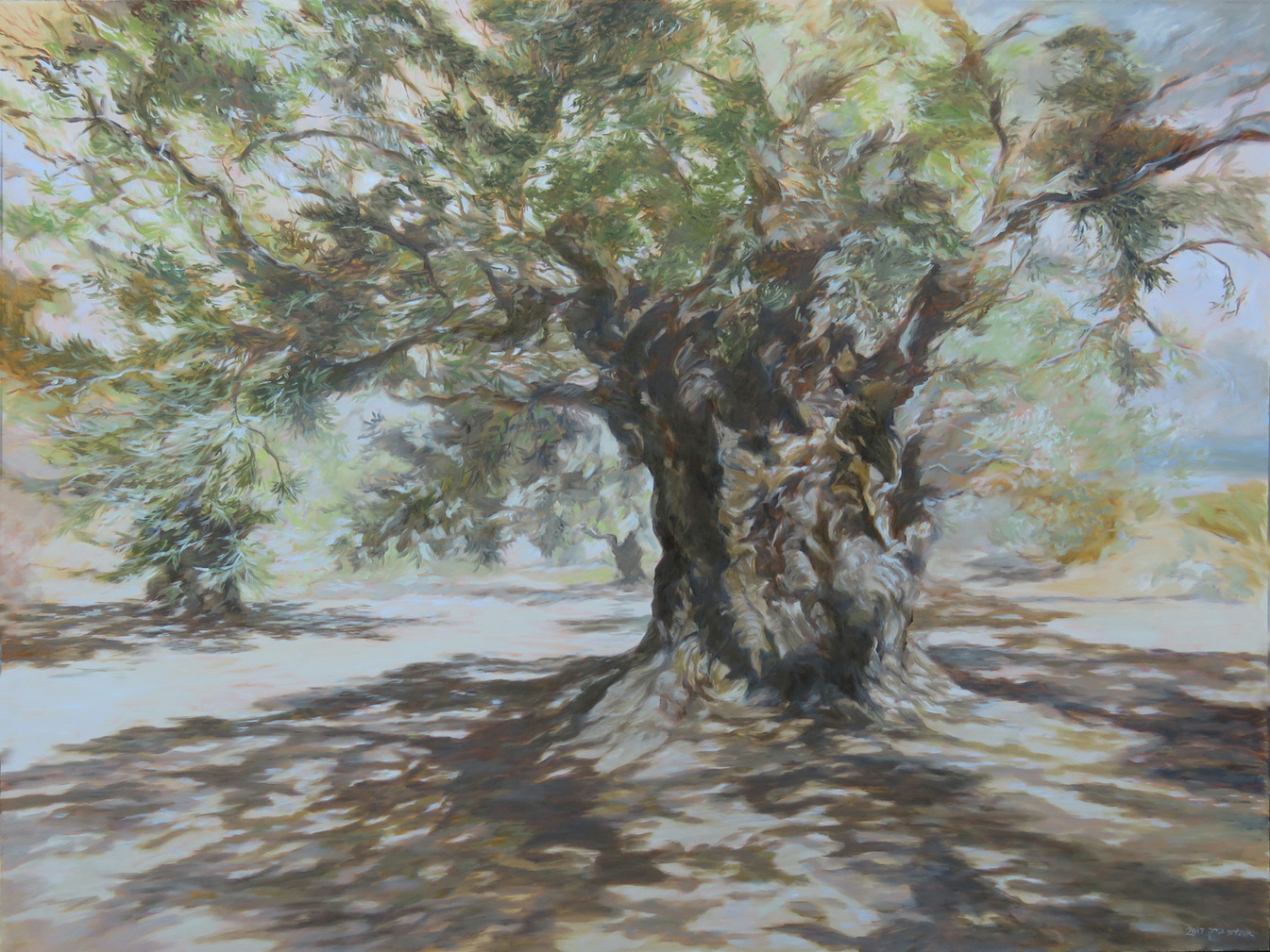 Olive tree-Oil- 90X120cm-2017