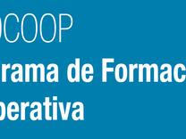 Llamados a entidades de capacitación y consultores - PROCOOP