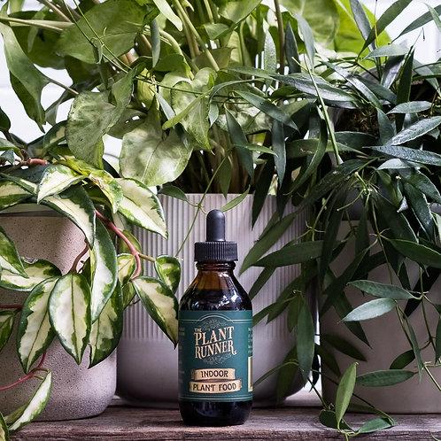 Indoor Plant Food