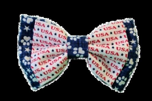 InDOGuration Bow tie