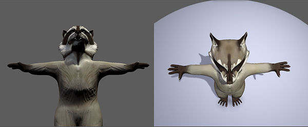 Raccoon 3.jpg