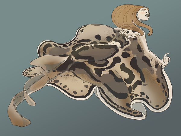 Eastern Fiddler Ray.png