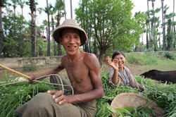 Farming couple in Inwa.jpg All the men eat Betel (kind of like tobacco) which makes their teeth go r