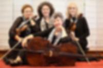 Bella Music Strings