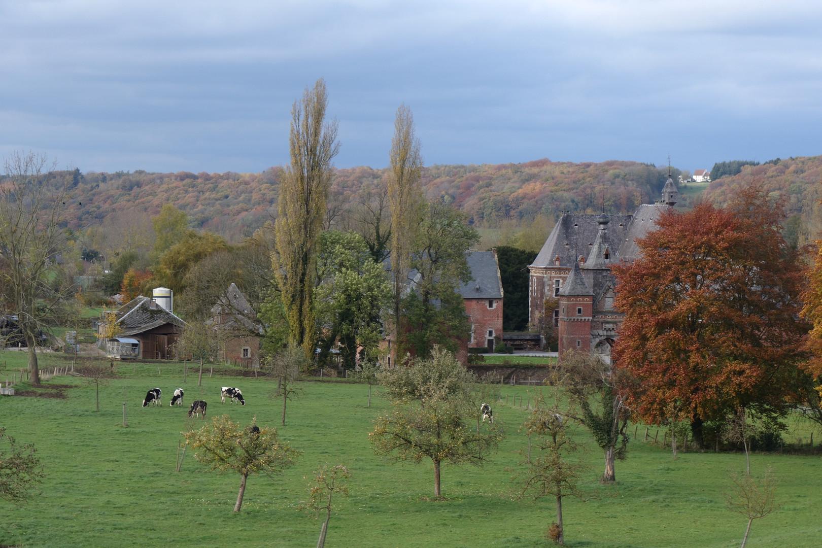 Mille Fleurs - View Castle