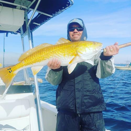 Navarre beach fishing Charters.jpg