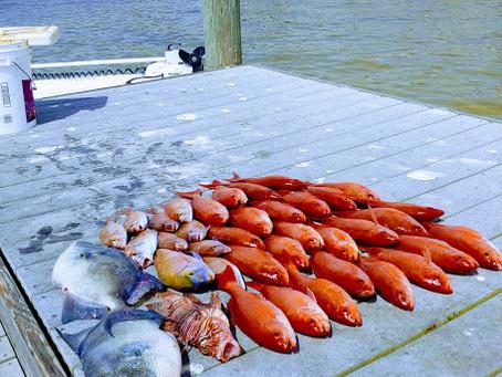 Pensacola Fishing Report 03/25/19