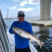 Orange Beach Fishing Charters.jpg