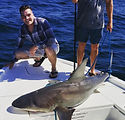 Shark Fishing Pensacola.jpg