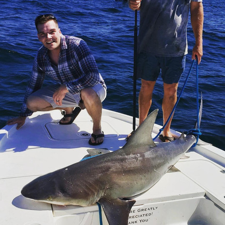 Shark Fishing Pensacola