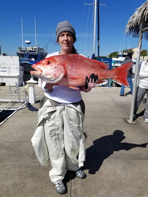 Nearshore Fishing Charters Pensacola