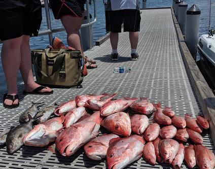 Navarre Beach Fishing Report 06-20-19