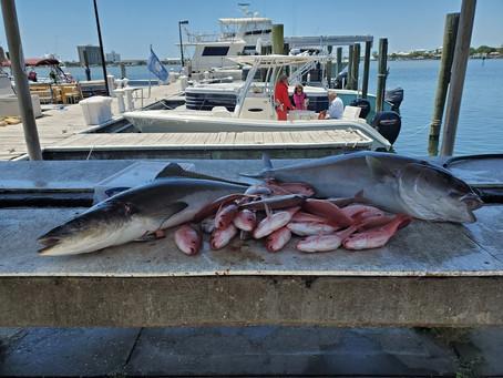 Pensacola Beach Fishing Report 05/15/2020