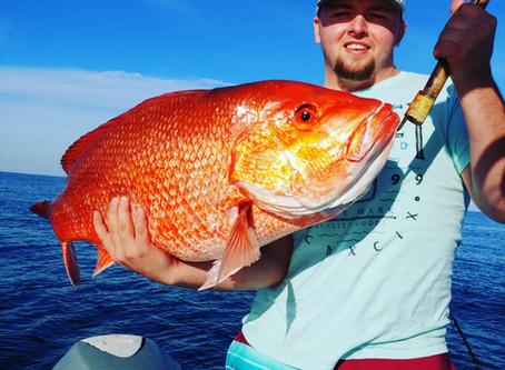 Navarre Fishing Report 12/20/18
