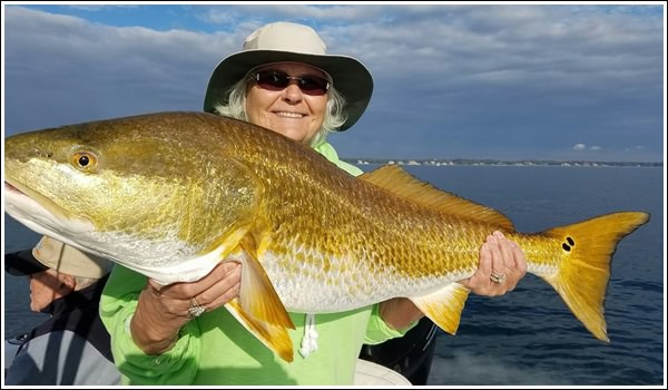 navarre beach fishing charter