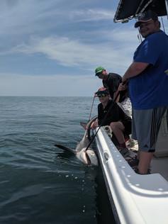 Pensacola Beach Shark Fishing