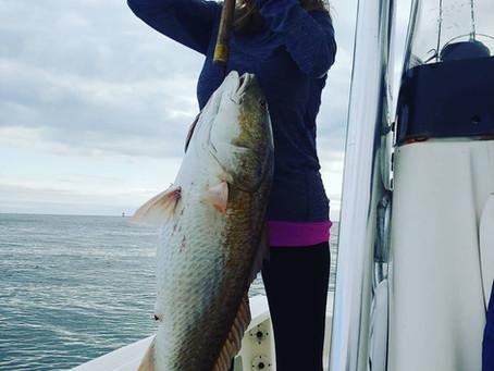 Pensacola Fishing Report 12/01/18-12/05/18
