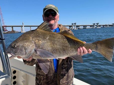 Perdido Key Fishing Report 03-09-19
