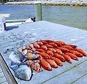 Pensacola fishing charters 1.jpg
