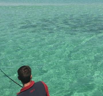 Fishing Report Perdido Key 11/28/18-12/05/18