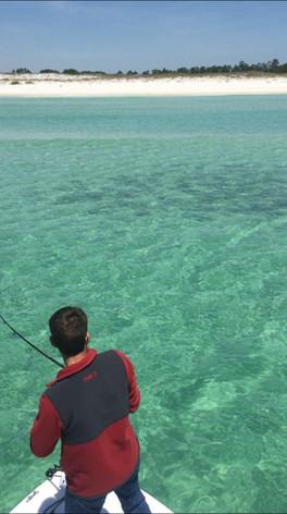 Perdido inshore fishing charters