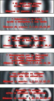 pirelli99txt2.jpg