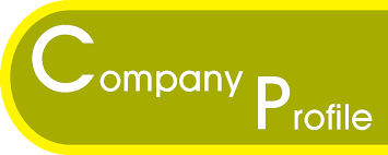 Importance of a Company Profile – Are you making the right decision?