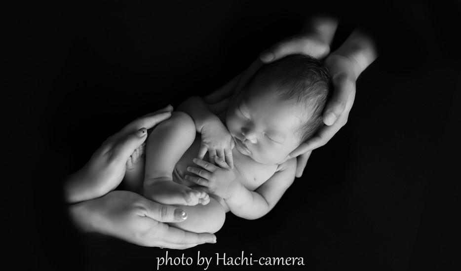 UMI Newborn photo ロゴ14.jpg