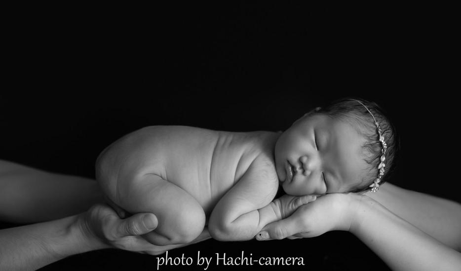 Newborn photo ロゴ28.jpg