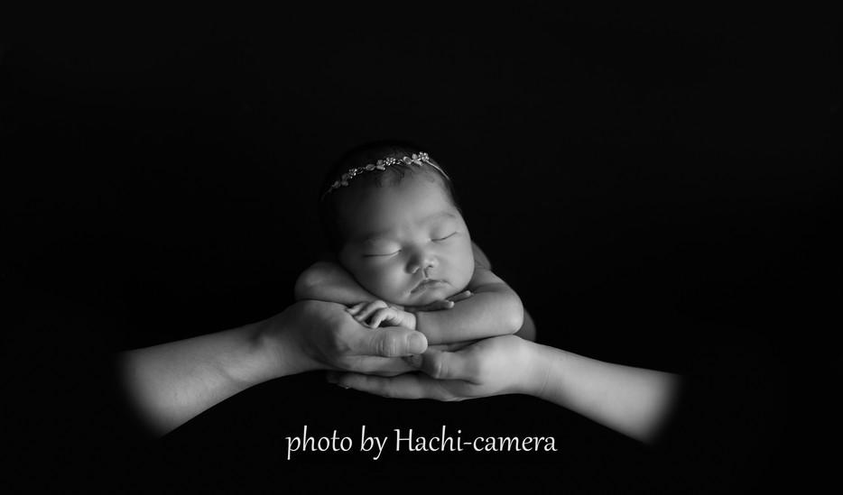 Newborn photo ロゴ24.jpg