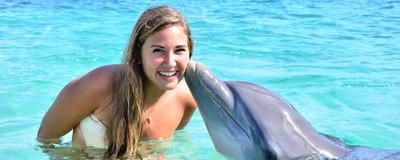 Dolphins-Encounter.jpg