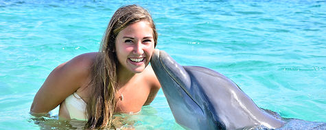 Dolphins-Encounter.jpg