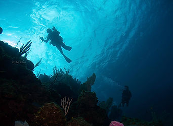 divers+1+final+(1+of+1).jpg