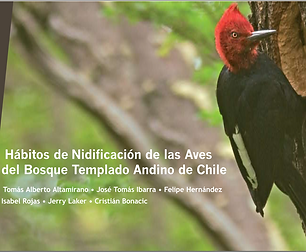 Hábitos de Nidificación de las Aves de los Bosques templado andino de Chile
