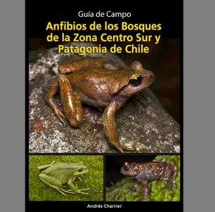 Guía de Campo. Anfibios de los bosques de la Zona Centro Sur y Patagonia de Chile