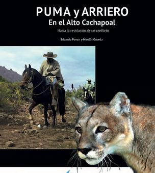Puma y arriero en el Alto cachapoal, hacia la resolución de un conflicto