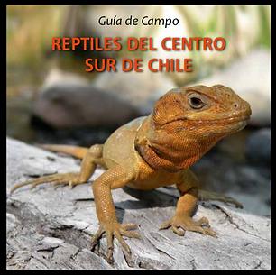 Guía de Campo Reptiles del Centro Sur de Chile