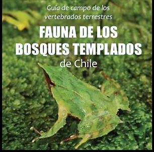 Fauna de los bosques templados de Chile