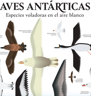Poster Aves Antarticas