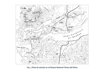 Tafonomía de la interacción entre pumas y guanacos en el parque nacional Torres del Paine