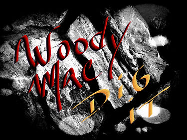 woody mac dig it front cover.jpg
