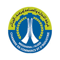 CCI Mezghana