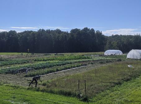 General Farm Update September 2020