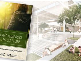 Livro: Gestão Pedagógica na Escola de AEP (Abordagem Educacional por Princípios)